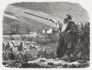 Moses sends a plague of locusts on Egypt - Artist unknown