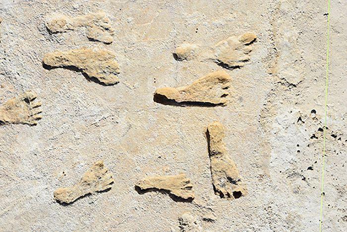 Footprints in White Sands National Park