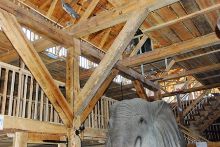 Head of life-size elephant inside Noah's ark replica