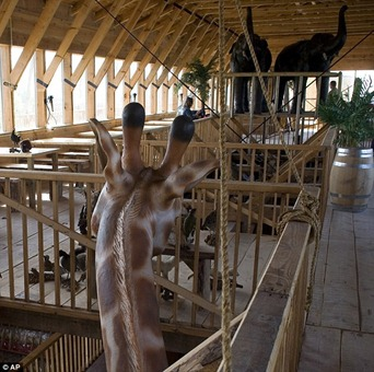 The unique design allows good air circulation and clearance for animals such as the giraffe