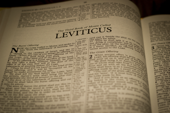 Detailed outline of the Book of Leviticus - offerings - cleanliness, atonement, and holy living
