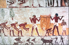 Ancient Egyptian art showing men collecting and carrying grain