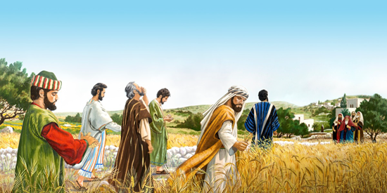 Jesus' disciples pick grain from field on the Sabbath - artist unknown