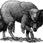 Wolves in the sheep's clothing – to avoid following a false prophet or heretical minister, do your research first.