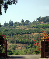 The Mount of Beatitudes as seen from Capernaum